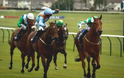 Muscika on Song at Ayr